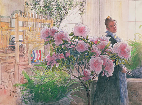 Azalea Poster featuring the painting Azalea by Carl Larsson