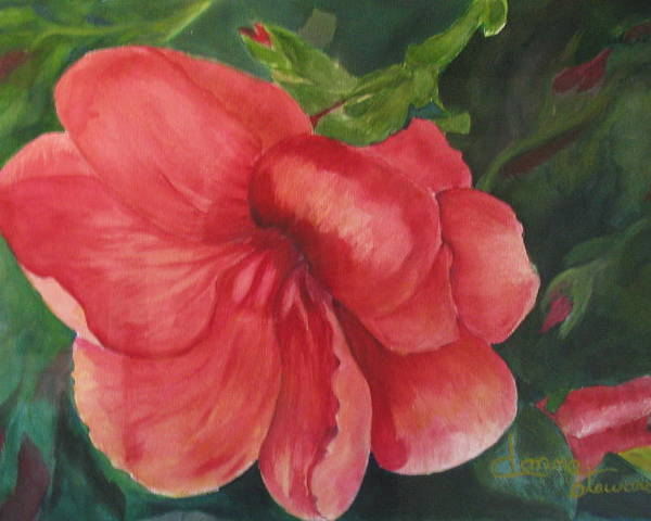 Flower. Floral Poster featuring the painting Bahama Beauty by Donna Steward