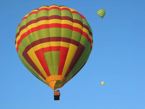 Hot Air Balloons Poster featuring the photograph Balloons New Mexico by Margaret Fortunato