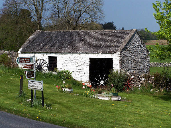 Ireland Poster featuring the photograph Barn At Fuerty Church Roscommon Ireland by Teresa Mucha