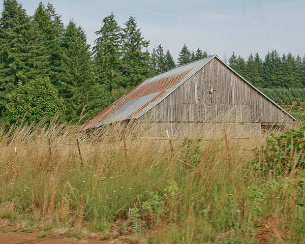 Vintage Poster featuring the photograph Barn In Oregon by Liz Santie