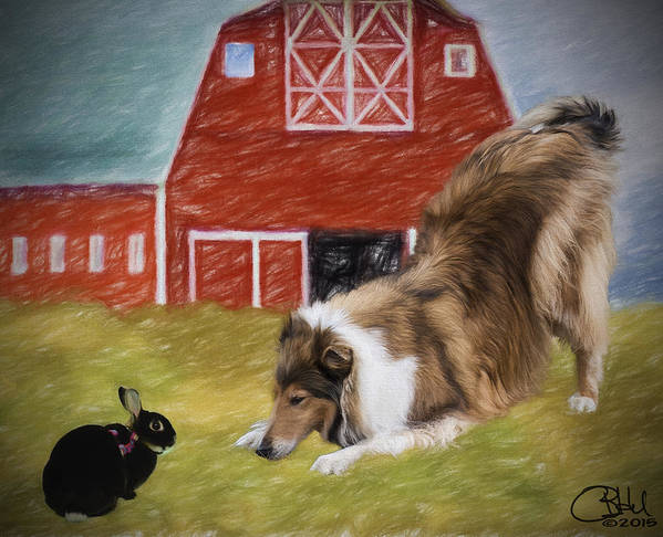 Collie Poster featuring the digital art Barnyard Bow by Chuck Heubach