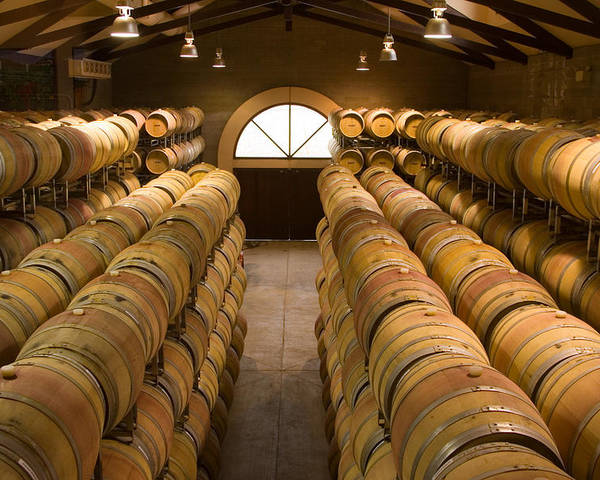 Horizontal Poster featuring the photograph Barrel Room by Eggers Photography