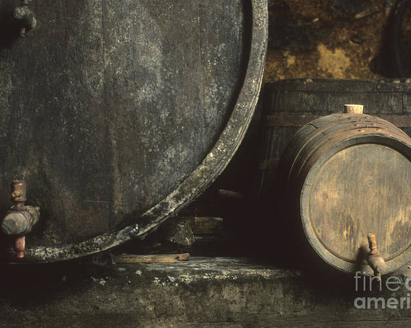 French  Poster featuring the photograph Barrels Of Wine In A Wine Cellar. France by Bernard Jaubert