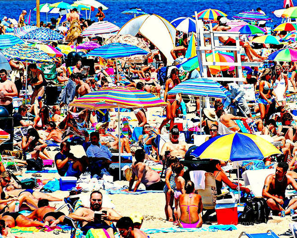Beach Poster featuring the photograph Beach Chaos by Diana Angstadt