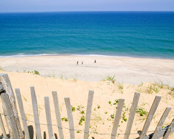 Beach Fence Poster featuring the photograph beach fence and ocean Cape Cod by Matt Suess