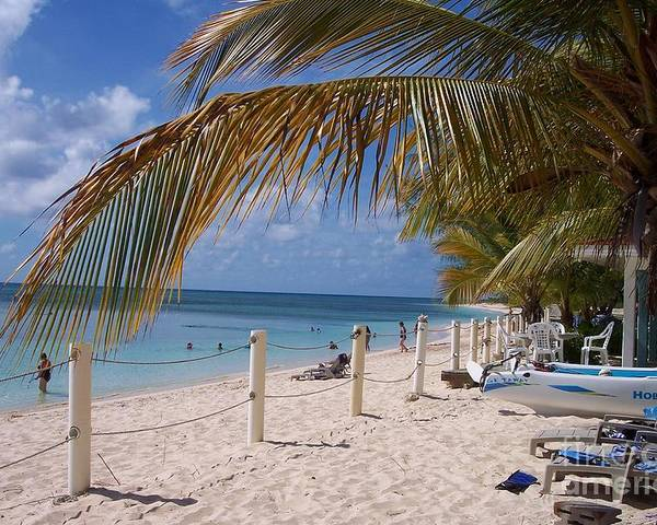 Beach Poster featuring the photograph Beach Grand Turk by Debbi Granruth