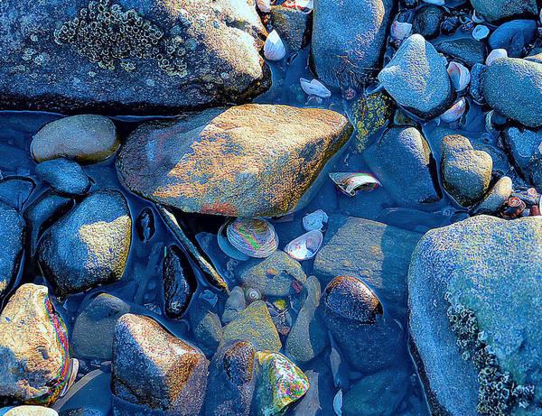 Beach Poster featuring the photograph Beach Rocks by Melissa Hicks