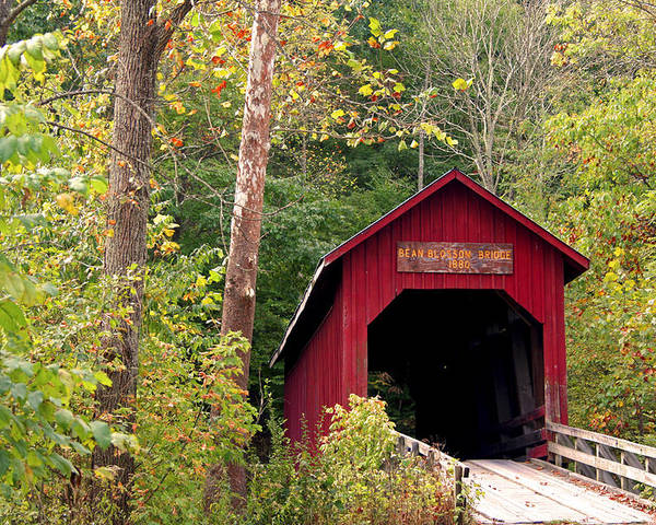 Covered Bridge Poster featuring the photograph Bean Blossom Bridge II by Margie Wildblood