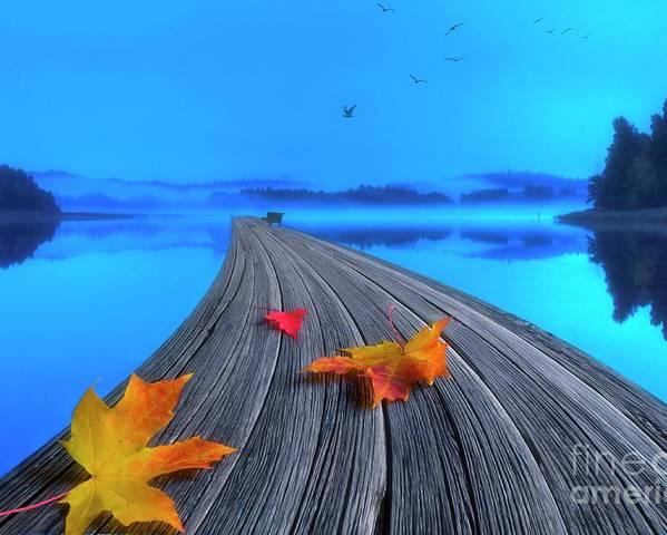 Artist Poster featuring the photograph Beautiful Autumn Morning by Veikko Suikkanen