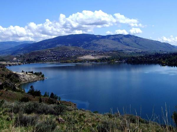 Lake Poster featuring the photograph Beautiful Okanagan Valley by Tiffany Vest