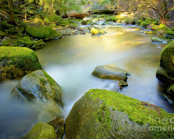 Creek Poster featuring the photograph Beauty Creek by Idaho Scenic Images Linda Lantzy