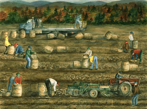 Potato Picking Poster featuring the painting Been There Done That In Aroostook County by Paula Robertson
