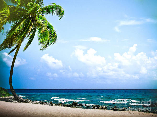 ryankellyphotography@gmail.com Poster featuring the photograph Belize Private Island Beach by Ryan Kelly