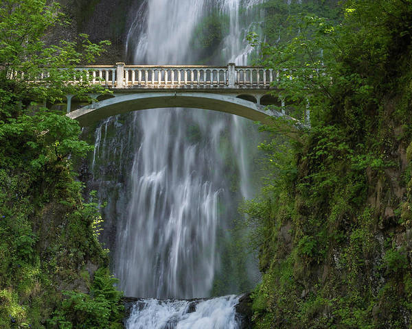 Waterfall Poster featuring the photograph Benson Footbridge by David Barile