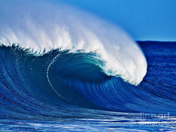 Backdoor Poster featuring the photograph Big Blue Wave by Paul Topp