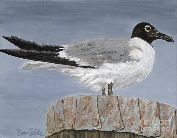 Seagull Poster featuring the painting Bimini Gull by Danielle Perry
