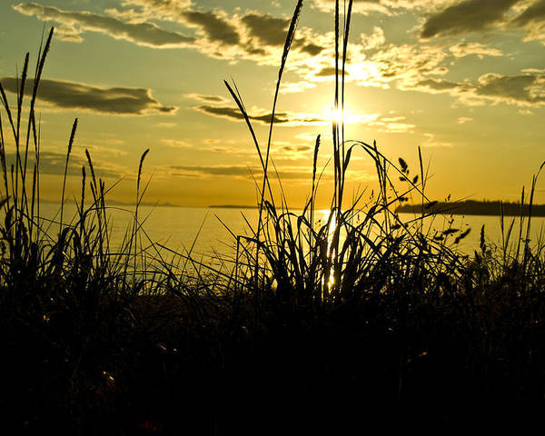 Poster featuring the photograph Birch Bay Sunset by JK Photography