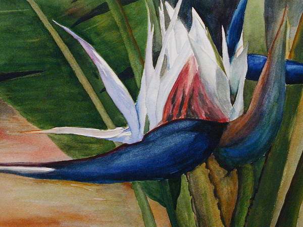 Flower Poster featuring the painting Bird Of Paradise by Dwight Williams