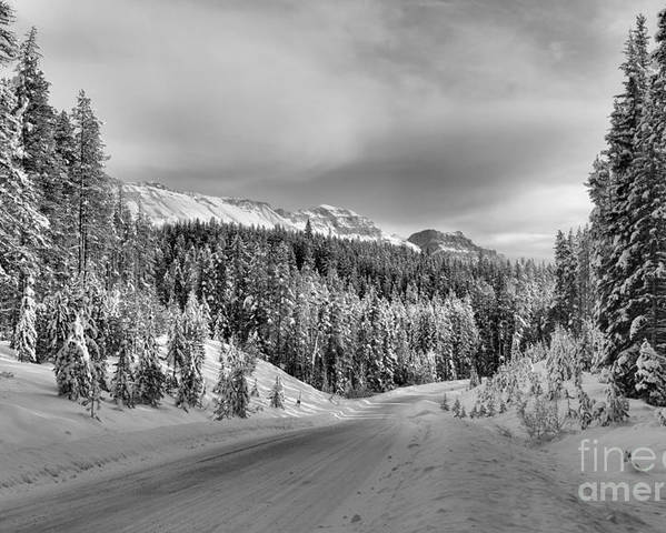 Poster featuring the photograph Black And White Bow Valley Parkway - Winter by Adam Jewell