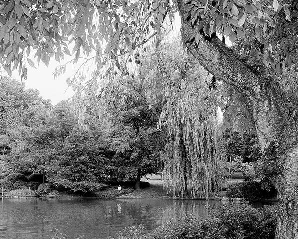 Lake Poster featuring the photograph Black And White Tranquility by Rodger Mansfield