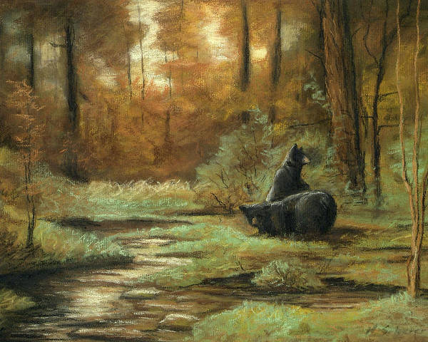 Wildlife Drawing Poster featuring the drawing Black Bear - Autumn by Michael Scherer