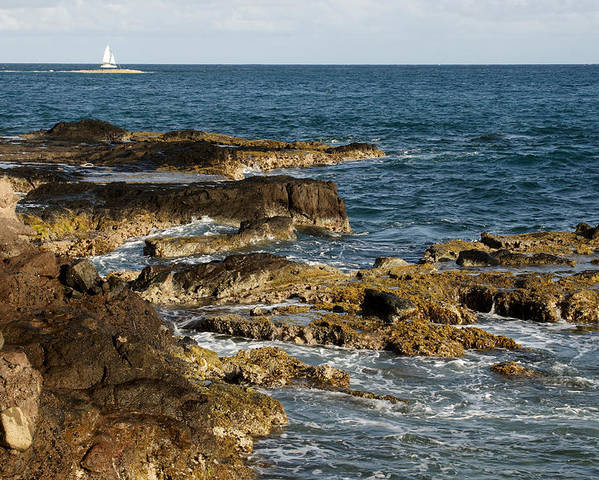Sailboat Poster featuring the photograph Black Rock Point And Sailboat by Jean Macaluso