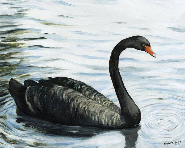 Black Swan Poster featuring the painting Black Swan by Charlotte Yealey