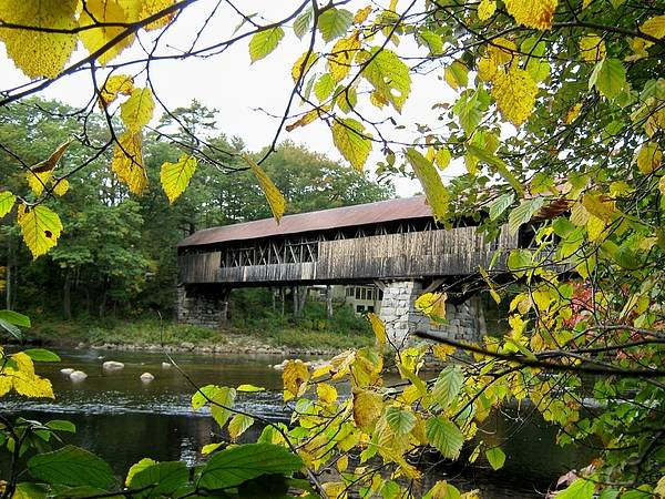 Nh Poster featuring the photograph Blair Covered Bridge by Wayne Toutaint