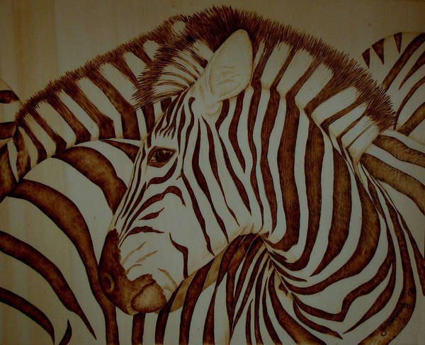 Pyrography; Woodburning; Sepia; Zebra; Stripes; Wild Life; Africa; Horse; Herd; Poster featuring the pyrography Blending In by Jo Schwartz