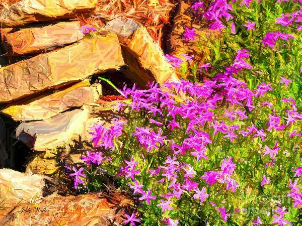 Rocks Poster featuring the photograph Blooming by Judy Waller