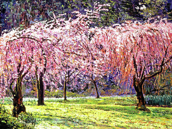 Cherry Blossoms Poster featuring the painting Blossom Fantasy by David Lloyd Glover