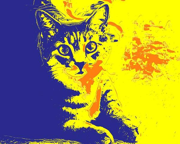 Cat Poster featuring the photograph Blue Bink by Donna Bentley