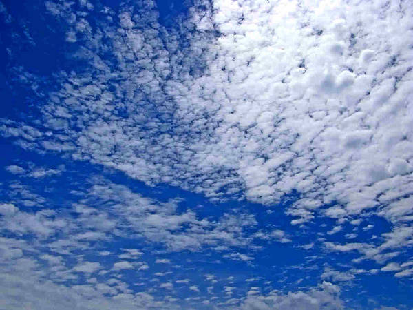 Sky Poster featuring the photograph Blue Sky With Clouds by Dragica Micki Fortuna
