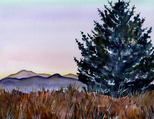 Watercolor Poster featuring the painting Blue Spruce by Brenda Owen