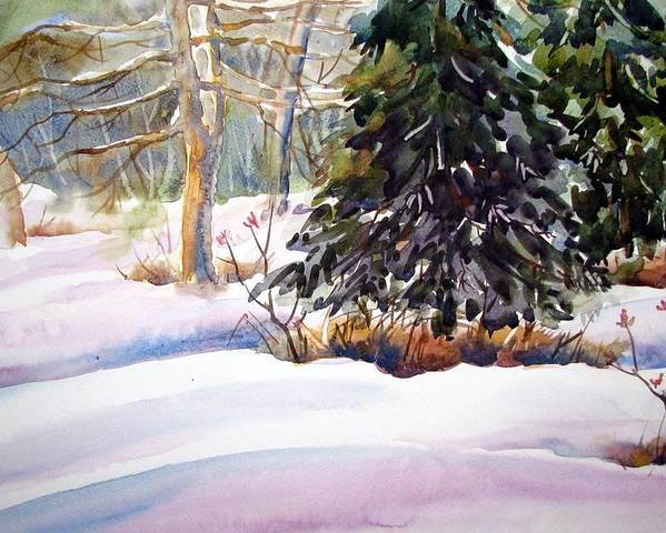 Watercolor Poster featuring the painting Blue Spruce by Chito Gonzaga