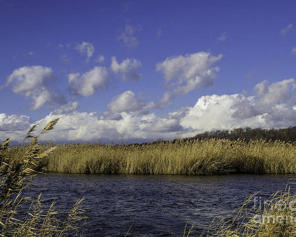 Marshland Poster featuring the photograph Blue Waters Of The Marsh by Doug Daniels