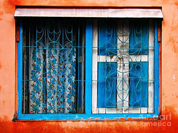 Window Poster featuring the photograph Blue Window by Derek Selander
