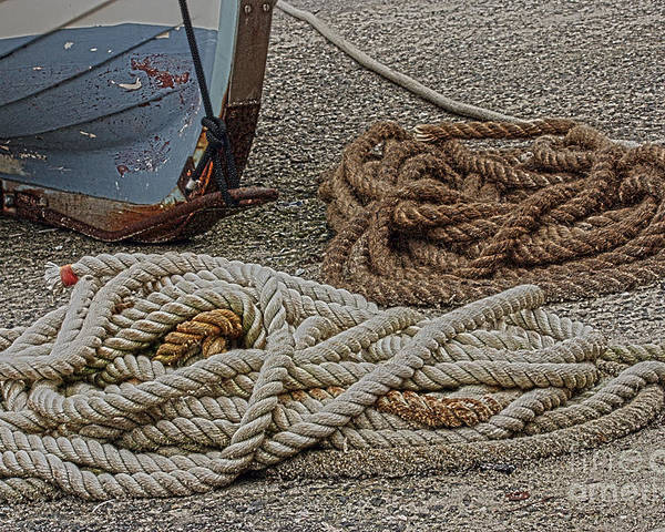 Landscape Poster featuring the photograph Boat Ropes by Terri Waters