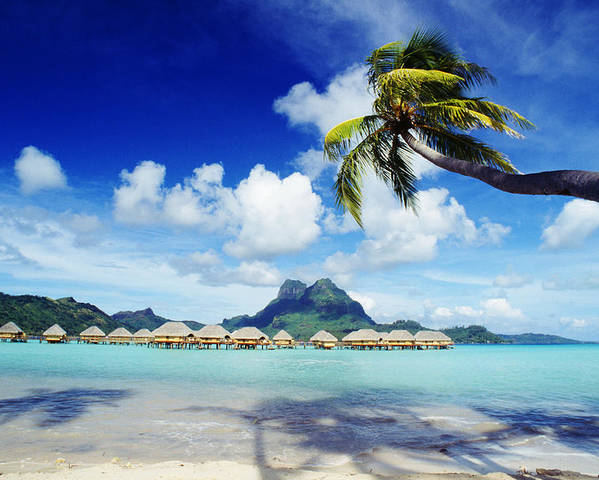 Afternoon Poster featuring the photograph Bora Bora, Lagoon Resort by Himani - Printscapes