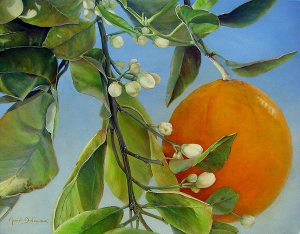 Floral Painting Poster featuring the painting Boutons d Oranges by Muriel Dolemieux