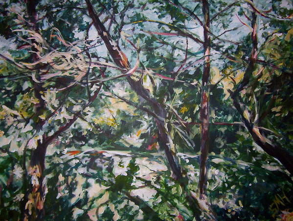 Landscape Poster featuring the painting Branches Of Light by Sheila Holland