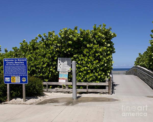 Florida Poster featuring the photograph Brevard County Florida Beaches by Allan Hughes