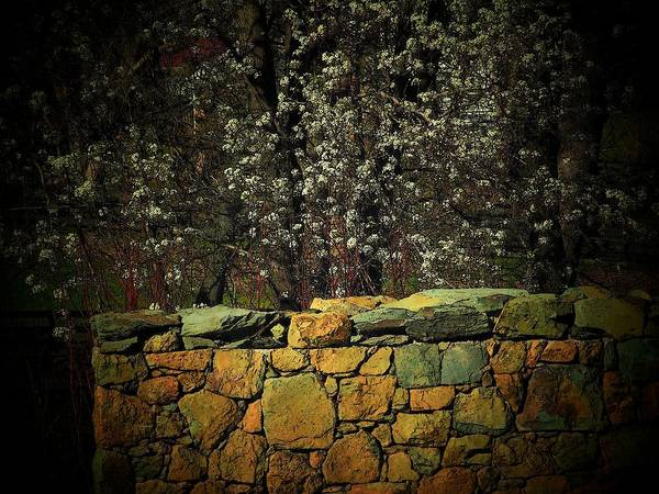 Fence Poster featuring the photograph Brick Fence by Michael L Kimble