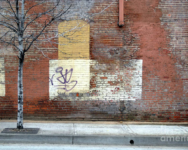 Brick Walls Poster featuring the photograph Brick Wall 3 Of Four by Walter Oliver Neal