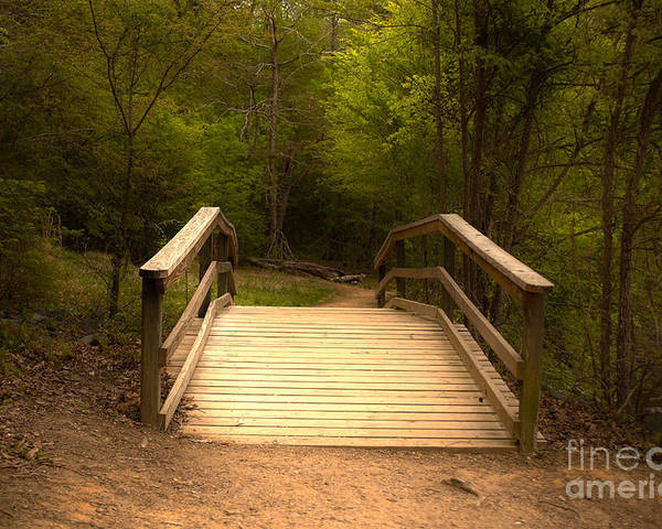 Bridge Poster featuring the photograph Bridge In The Woods by Sarah Johnson
