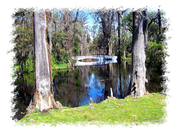 Bridge Poster featuring the photograph Bridge Over Pond by Ralph Perdomo