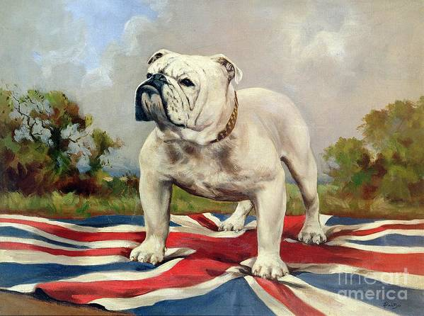 Grb; Union Jack; Dog Poster featuring the painting British Bulldog by English School