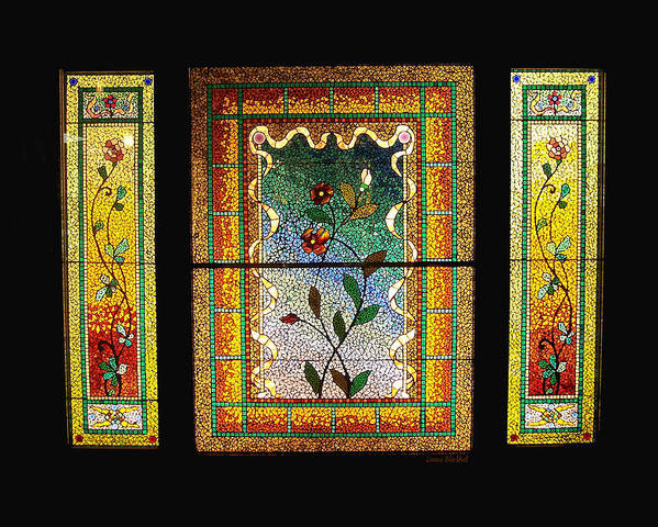 Stained Glass Poster featuring the photograph Broken Flowers by Donna Blackhall