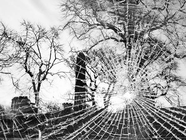 Black And White Poster featuring the photograph Broken Trees by Munir Alawi